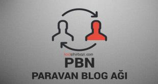 Ücretsiz Paravan Blog Nasıl Açılır